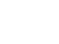 Night is Alive